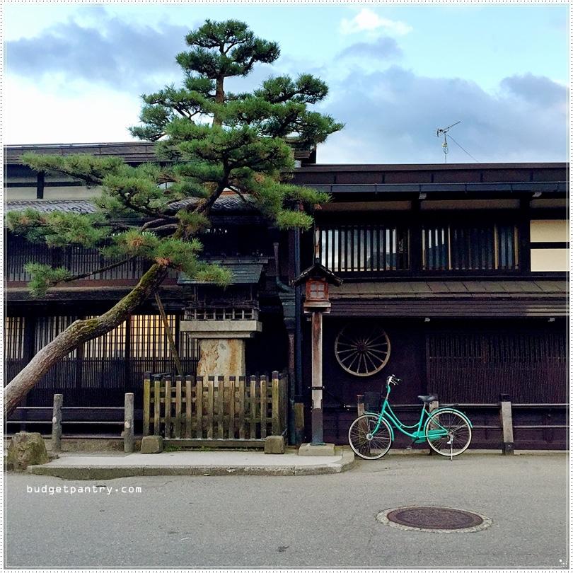 Real takayama1